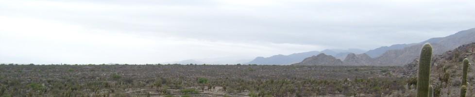 2007 Argentina